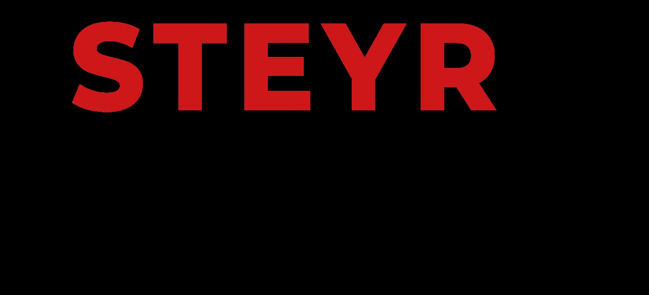STEYRaholic